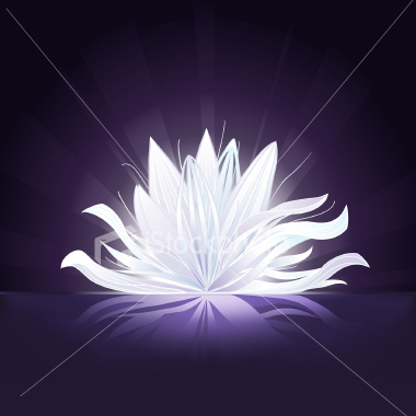 purple-flower-glowing-