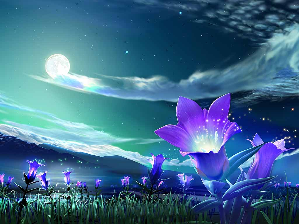 flower-under-night-sky