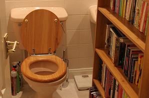 toiletjinn